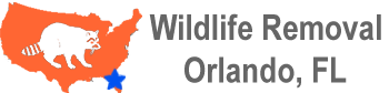 Essentialness of the Orlando Natural life Evacuation.